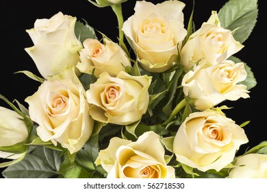 Bouquet of yellow roses on black background, close up.