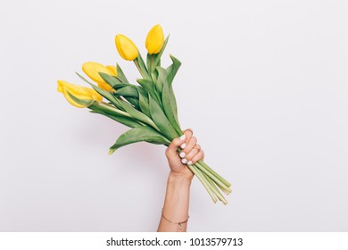A bouquet of yellow tulips in a female hand on a white background