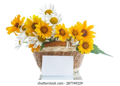 bouquet of yellow and white daisies on a white background