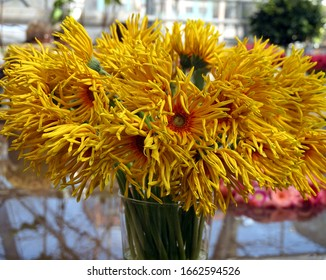 Bouquets of colorful yellow gerberas flowers in glass vases