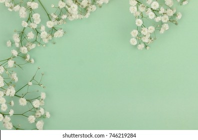 bouquets of a white gypsophila flower on a pale green background. top view. copy space. Holiday concept. Pastel colors