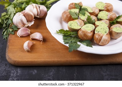 Bourgogne snails, with fresh parsley and garlic on white plate on black background. French food in Burgundy. Snails with garlic, butter as french gastronomy gourmet food. Bourguignonne snail au gratin
