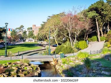 Bournemouth garden in the spring