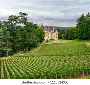 Boursault, Alsace-Champagne-Ardenne-Lorraine / France - October 7, 2016: French Champagne Estate with Castle near Epernay France