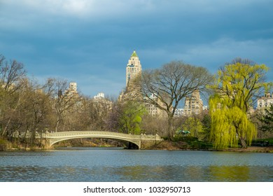 Bow Bridge and Willow tree in Central Park, New York City