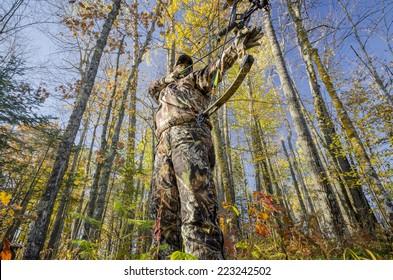 bow hunter aiming