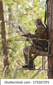 Bow hunter in a ladder style tree stand