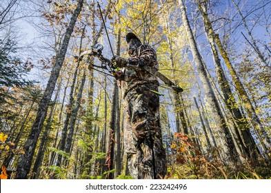 bow hunter standing