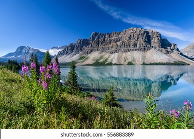 Bow Lake near Icefields Parkway, Banff, Rocky Mountains, Alberta, Canada