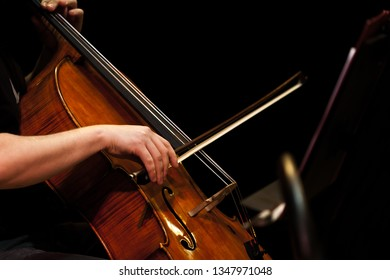 Bow on the cello strings