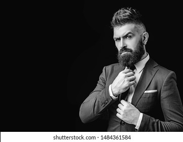 Bow tie. Bearded man in dark grey suit. Man in classic suit, shirt and tie. Rich man model. Luxury classic suits, vogue