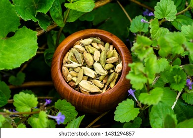 Bowl of cardamom seeds in mint leaves