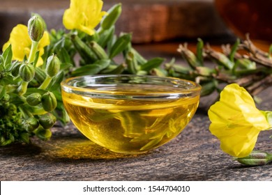 A bowl of evening primrose oil with fresh blooming plant in the background