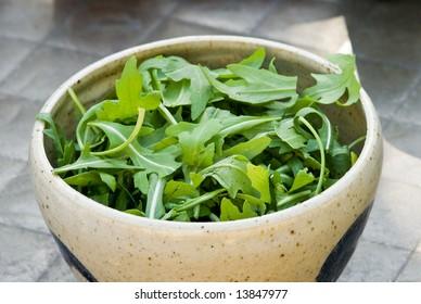 Bowl of Fresh Arugala