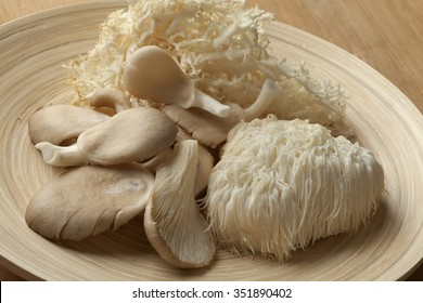 Bowl with fresh coral fungus, Lion's Mane Mushroom and oyster mushrooms