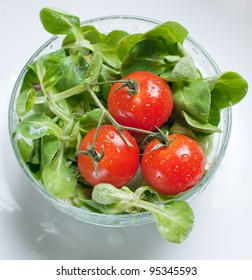 a bowl of fresh green salad and tomatoes