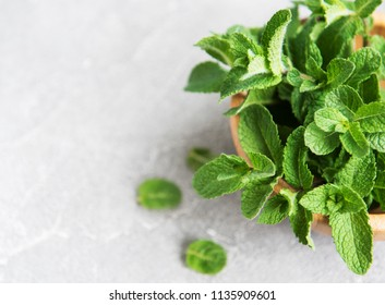 Bowl with fresh mint on a old background