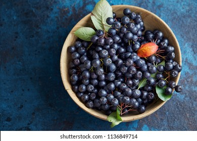 Bowl with freshly picked homegrown aronia berries. Aronia, commonly known as the chokeberry, with leaves