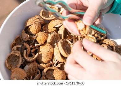 A bowl full of cracked nuts