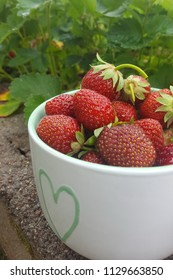 Bowl full of ripe strawberries on a green leaves background. Vertical orientation.