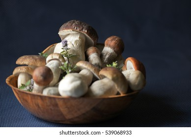 Bowl full of wild, fresh forest mushrooms