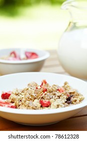 bowl of muesli with fresh fruits as diet food