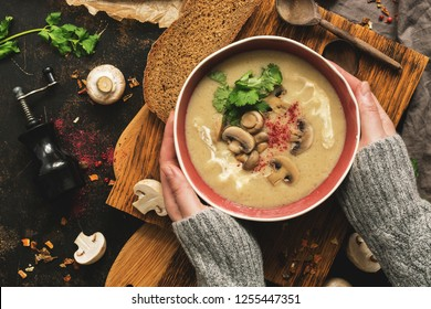Bowl of mushroom cream soup in woman hands in a woolen sweater. Rustic dark background, top view, flat lay. Winter warming soup on vintage cutting boards