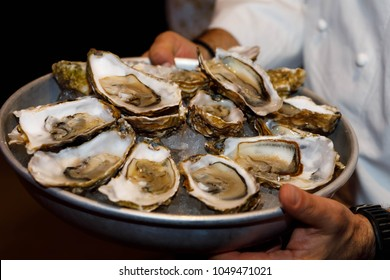 a bowl of oysters in the hands of a waiter