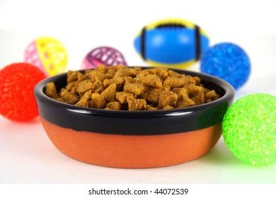 Bowl of Pet Food