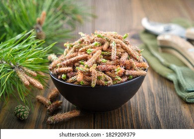 Bowl of pine buds. Pine tree buds and twigs with needle on table.