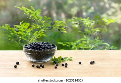 Bowl with ripe berries wild bilberries on wooden table on background of shrubs with ripe fruit wild bilberries in forest