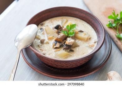 bowl of vegetarian mushroom soup