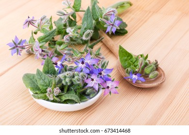 Bowl and wooden spoon with Borage / bowl with starflower / bee bread