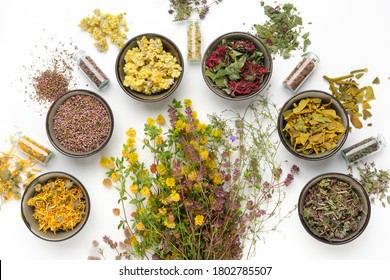Bowls of dry medicinal herbs, healing plants bunches and bottles of dry medicinal plants on white background. Top view, flat lay.