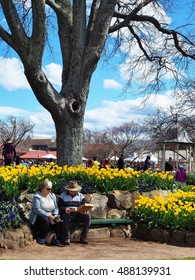 BOWRAL, AUSTRALIA - SEPTEMBER 24, 2016: An elderly couple enjoying lunch under the big tree at the Tulip Time Festival