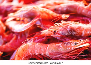 Box full of red shrimp. Early winter morning on Marsaxlokk market, Malta.