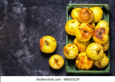 box full of of stale green apples on a dark black cement background, top view, copy space