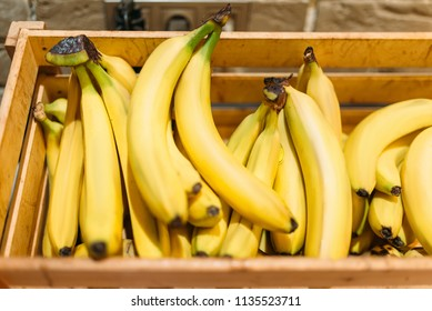 Box with ripe bananas in food store, nobody