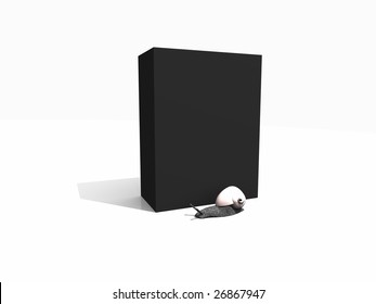 box with snail