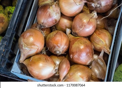 Box with white onions at the farmers market of La Orotava, Tenerife, Canary Islands