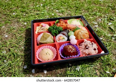 a boxed lunch / a boxed meal;