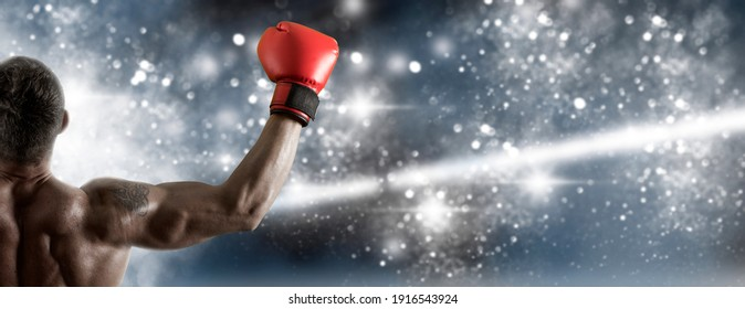 Boxer celebrating win on blue background. Sports banner. Horizontal copy space background