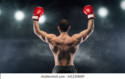 Boxer champion enjoying his victory on lights and standing back to the camera, black studio background