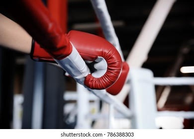 Boxer holding hands in gloves on rope of boxing ring