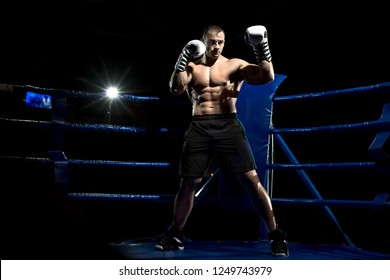 boxer on boxing ring, black bacground, horizontal photo