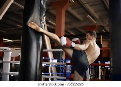 Boxer training with punchbag in gym