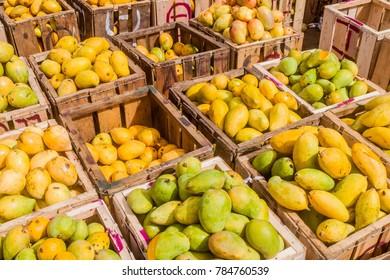 Boxes o mango at Manning Market in Colombo, Sri Lanka