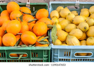 Boxes with oranges and lemons.