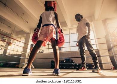 Boxing kid training with his coach inside a boxing ring wearing boxing gloves and headgear. Coach teaching techniques of boxing to a kid.