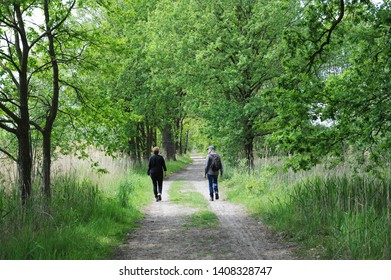 Boxtel, Noord Brabant, Netherlands, 05-23-2019: man and woman hiking in nature reserve Kampina